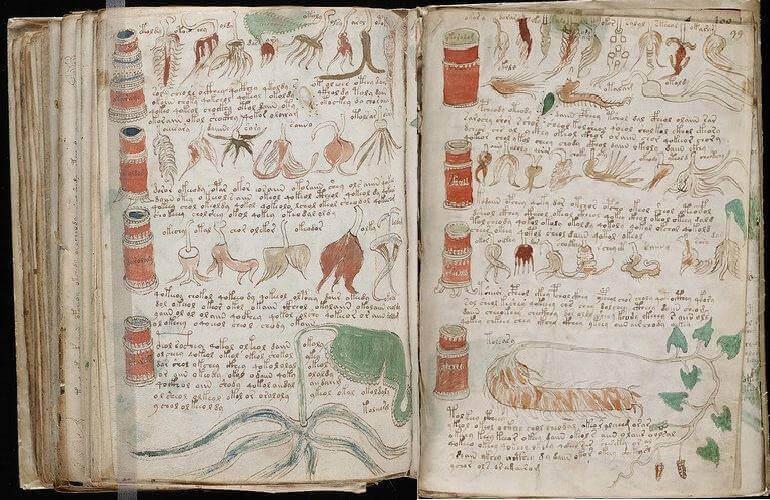 วอยนิช (Voynich manuscript) หนังสือที่ไม่เคยมีใครอ่านออก ?